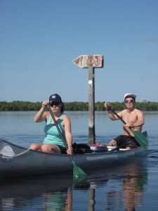 Everglades 396