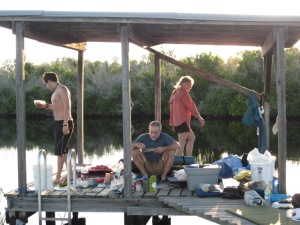 Everglades 423