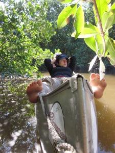 Everglades 668