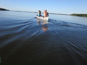 Everglades 786